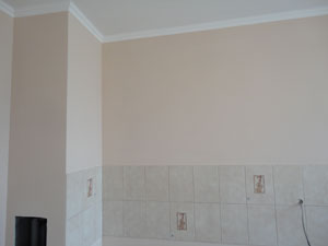 фото стены кухни