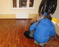 оценка ремонт квартиры